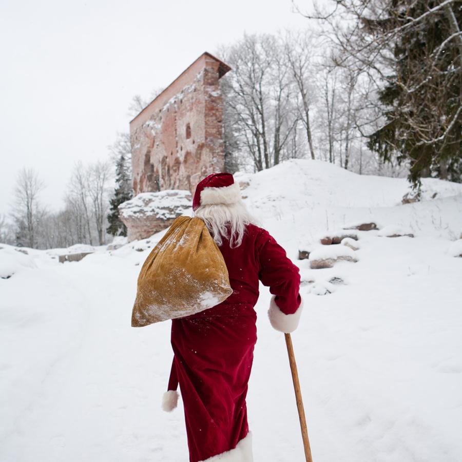 Elamuspank Viljandi lossimägedes, 21.01.2013
